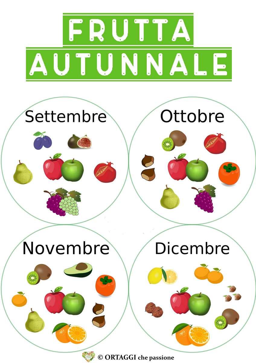 immagine di tutta la frutta di stagione in autunno nei mesi di settembre ottobre novembre e dicembre