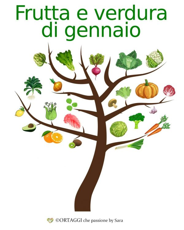 gennaio ALBERO frutta e verdura di stagione
