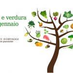 Frutta e verdura di gennaio – km0 e di stagione