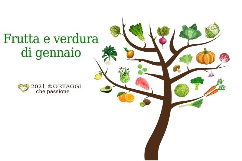 gennaio ALBERO frutta e verdura immagine orizzontale