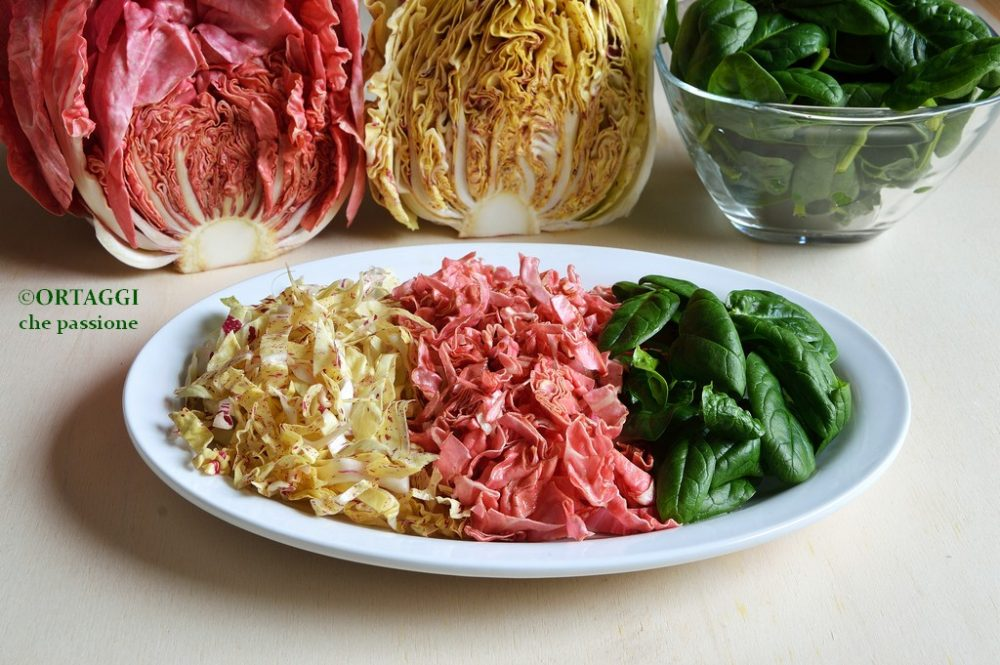 insalata invernale mista - ricetta antipasto light