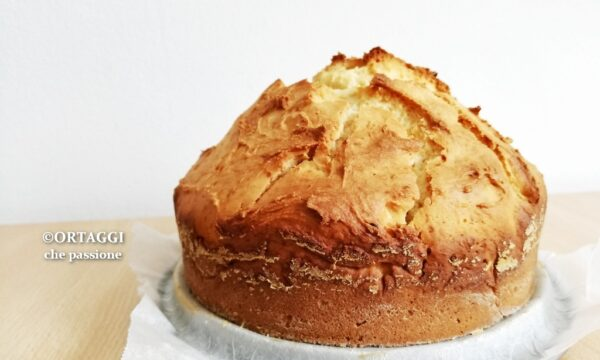 Torta SENZA uova e lievito – ricetta VELOCE