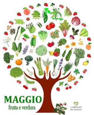 MAGGIO frutta e verdura di stagione - ORTAGGI che passione