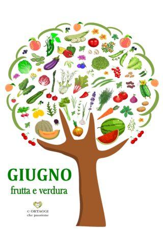 V 6 GIUGNO frutta e verdura di stagione