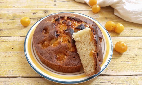 Torta semplice con susine gialle