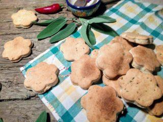 I Salvietti, biscottini salati e croccanti