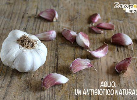 Aglio: un antibiotico naturale