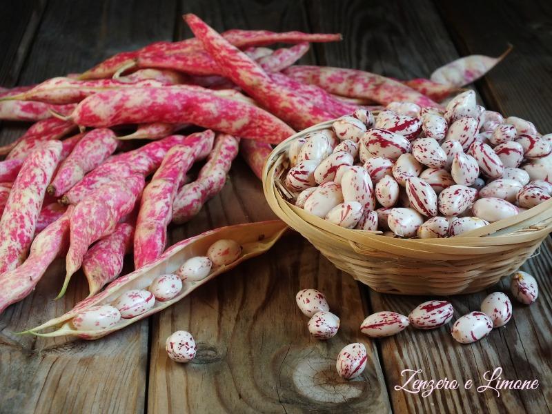 Come cuocere i fagioli borlotti freschi