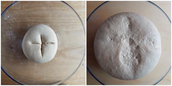 pagnottelle aromatiche - procedimento 2