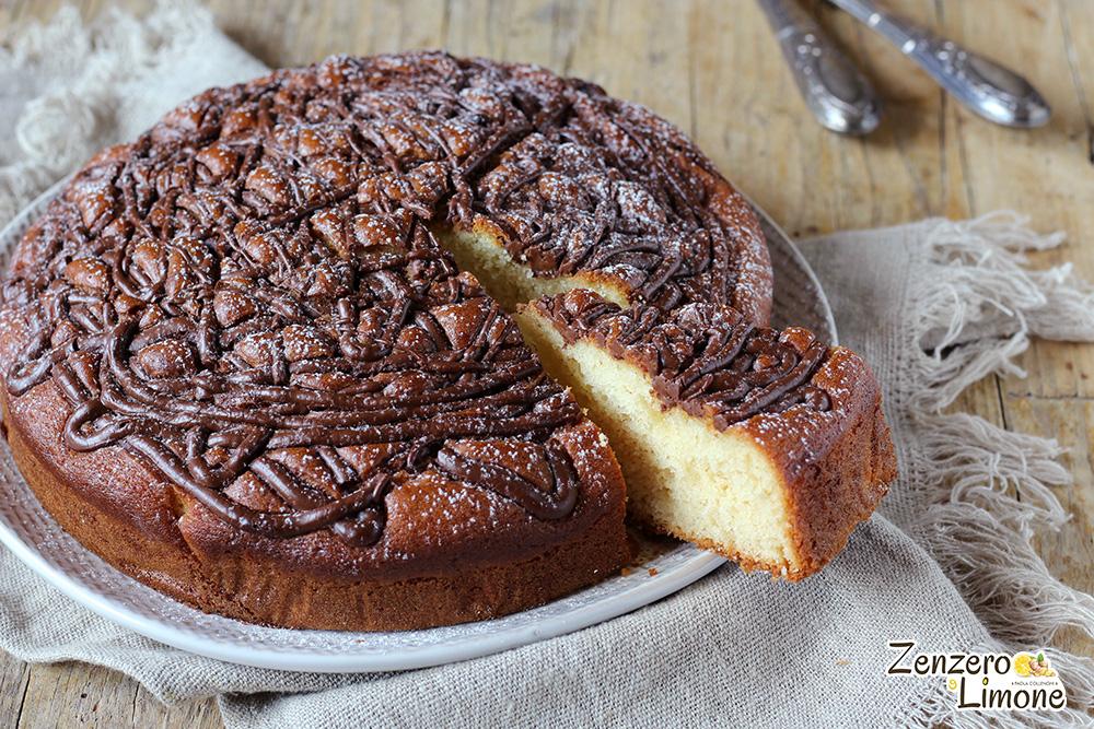 torta veloce alla nutella - tagliata