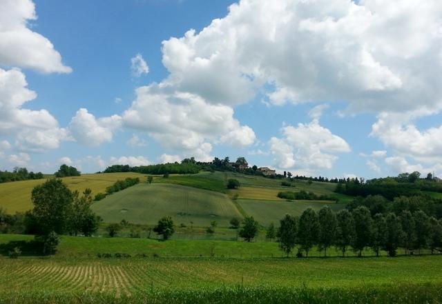 monferrato hills PapillaMonella