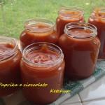 Ketchup come farlo in casa