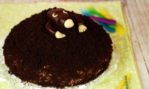 Torta di compleanno al cioccolato – cucù, c'è un intruso