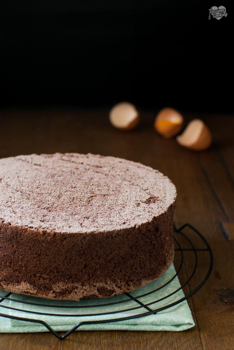 Pan di spagna al cacao - ricetta base