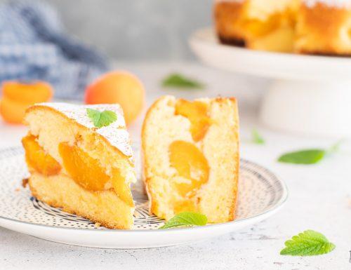 Torta bolzanina – morbidissima, con frutta fresca