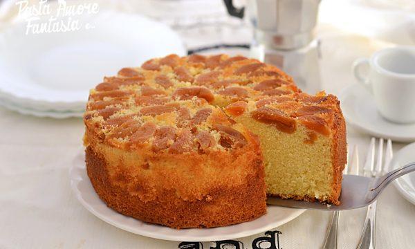 Hot milk Sponge Cake (Torta al latte caldo) alle albicocche