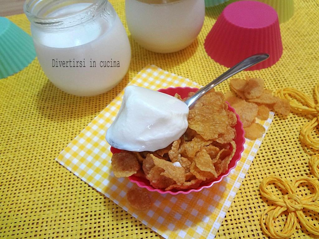 Ricetta yogurt fatto in casa Divertirsi in cucina