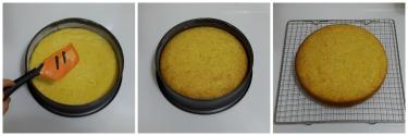 torta-con-farina-di-riso-senza-glutine-peccato-di-gola-di-giovanni-4
