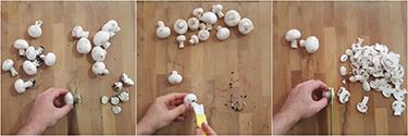 funghi e castagne con tomino, peccato di gola di giovanni 2