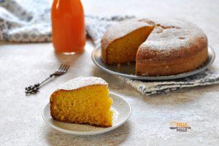 torta al succo di frutta senza burro