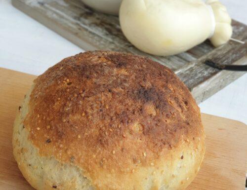 Pane ai cereali senza glutine