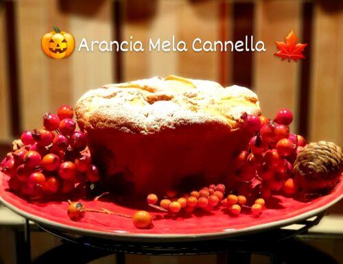 Torta super soffice e profumata arancia mela e cannella senza glutine e senza lattosio