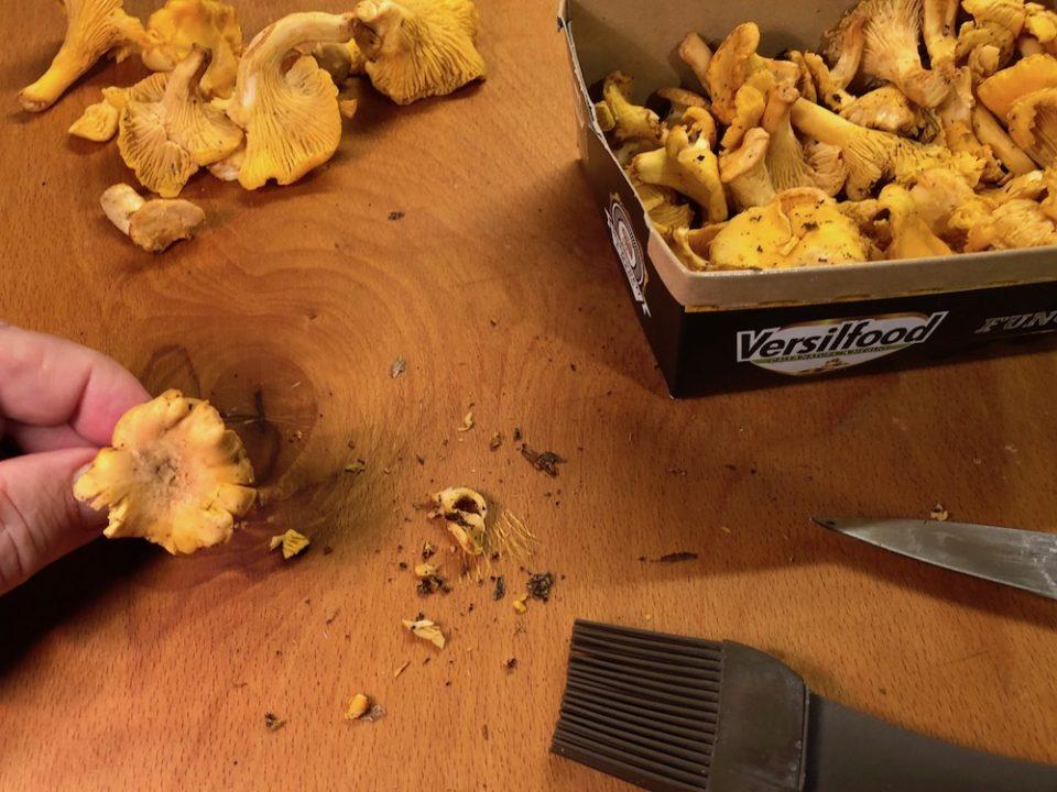 Risotto con gallinacci e zucchine