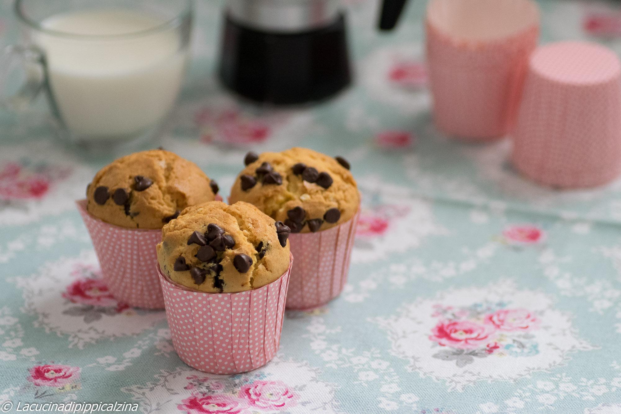 muffin gocce-5423