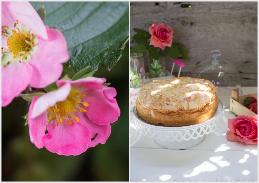 due foto con fiore di fragola