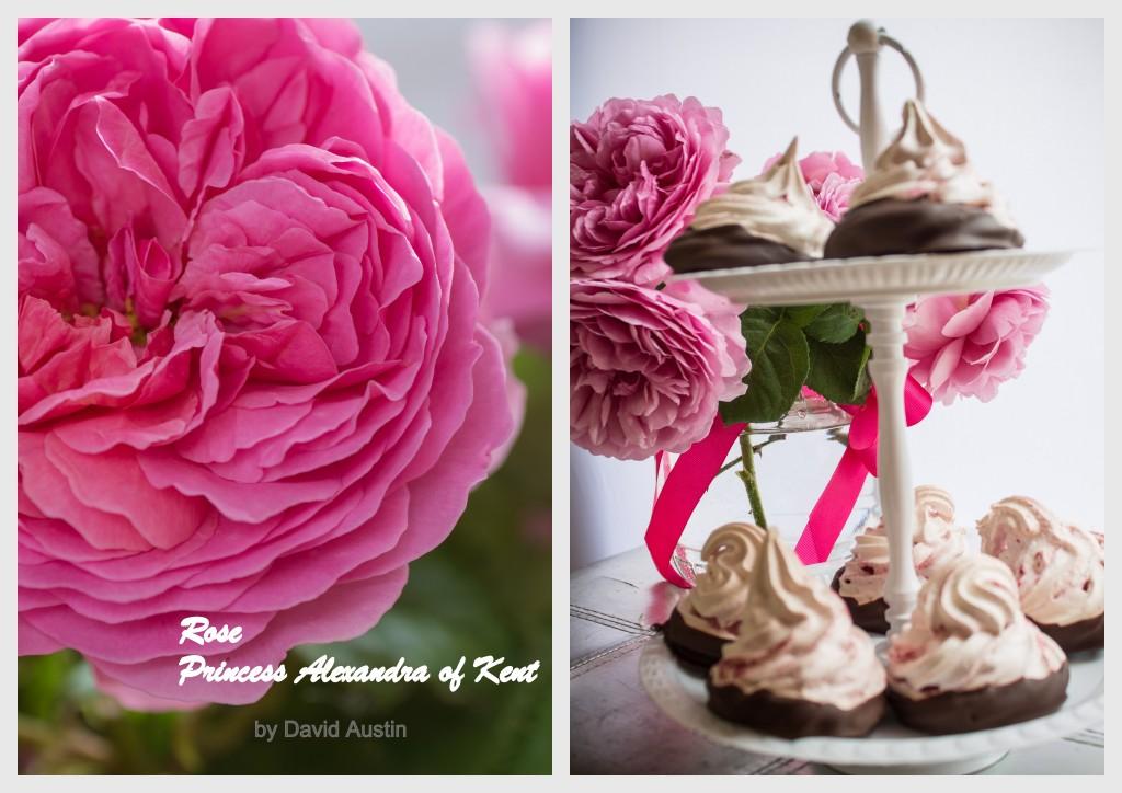 rosa e spumini