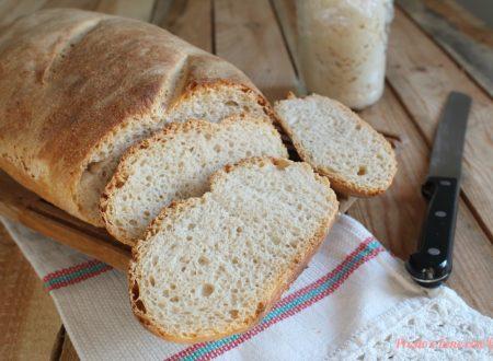 Pane con pasta madre con o senza Bimby