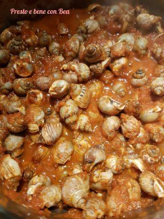 Lumachini di mare in umido
