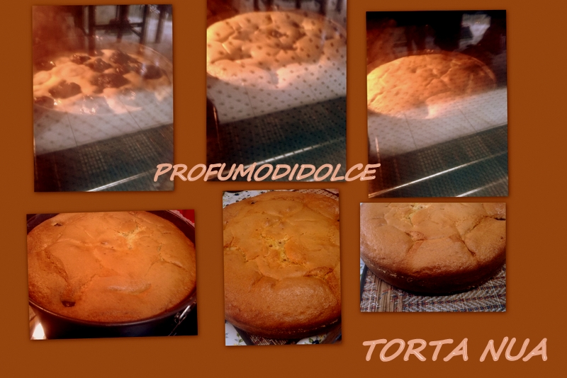 2014-01-15 torta nua2