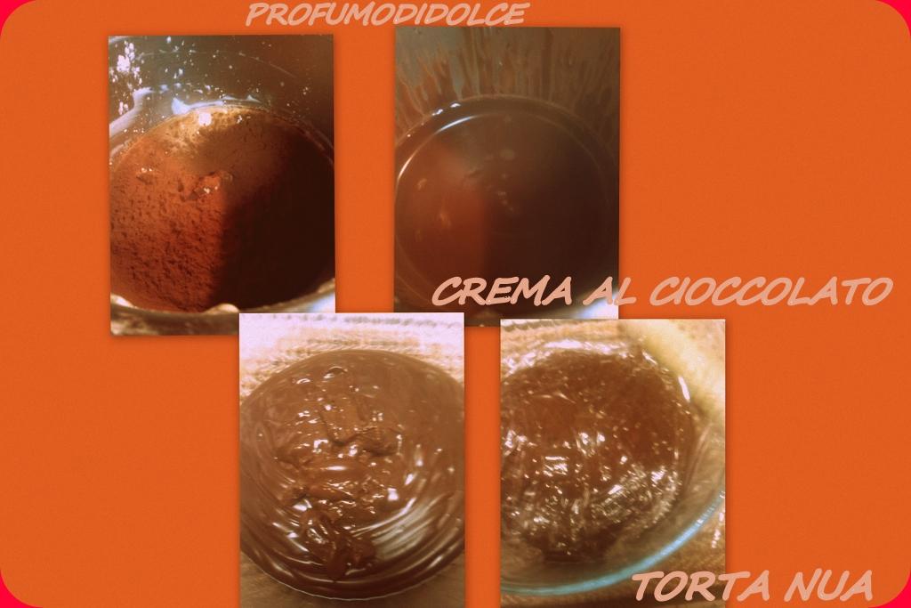 2014-01-15 torta nua6