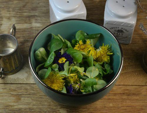 Insalata con fiori di tarassaco e samare dell'olmo