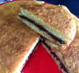 Torta morbida con crema di nocciole