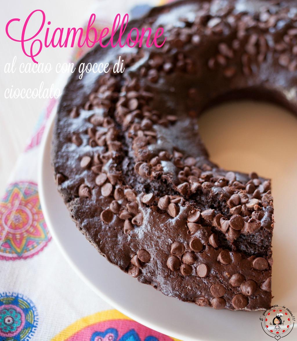 Ciambellone Al Cacao Con Gocce Di Cioccolato
