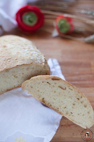 Pane semplice con lievito madre