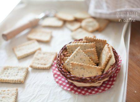 Crackers ai semi con lievito madre