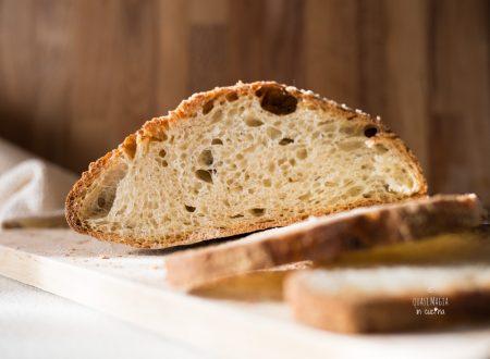 Pane alle cipolle, con lievito madre e senza