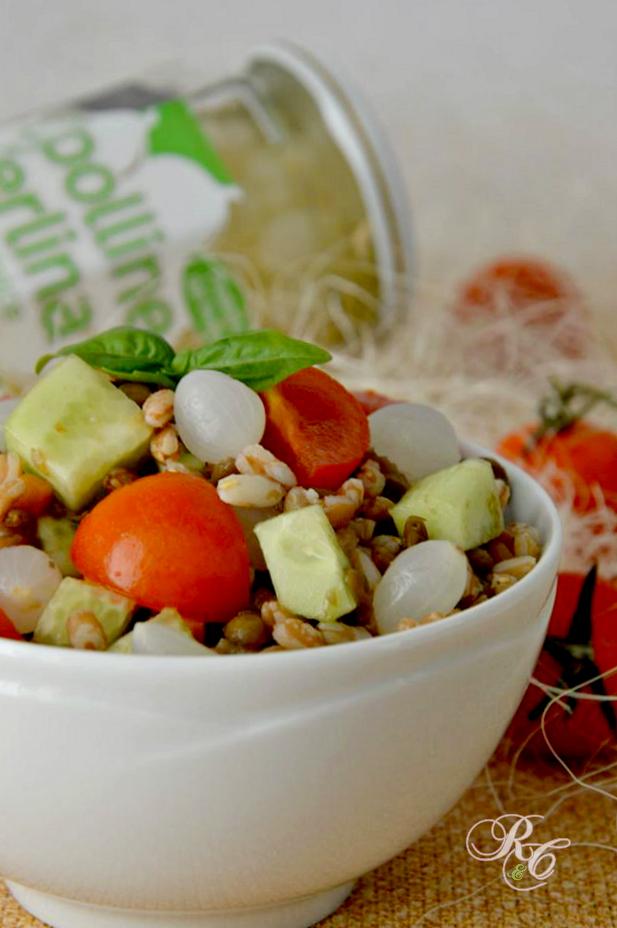 insalata di orzo perlato e lenticchie
