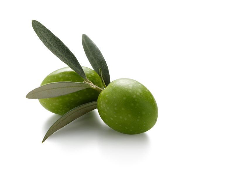 Come conservare le olive: olive in salamoia, olive sott ...