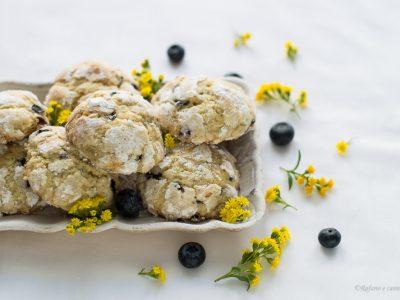 biscotti morbidi ai mirtilli
