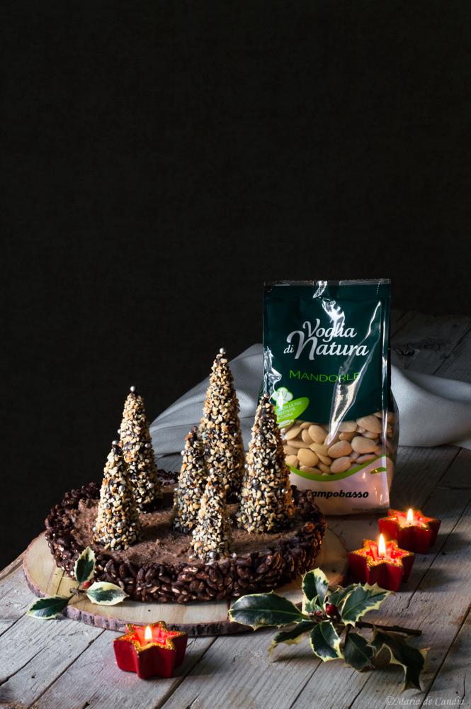 torta natalizia al cioccolato e mandorle