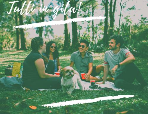 Ricette per picnic, facili e pratiche