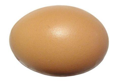 Quante Proteine ha un Uovo Medio di Gallina