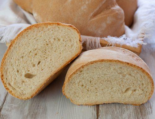 Pane semi integrale con farina di tipo 2