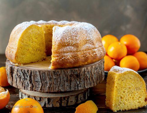 Ciambella pan di clementine