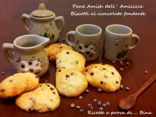 Pane Amish dell Amicizia Biscotti al cioccolato fondente