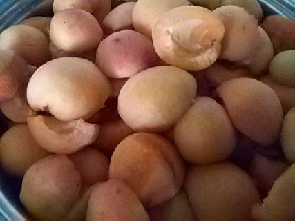 Frutta sciroppata: albicocche conservate